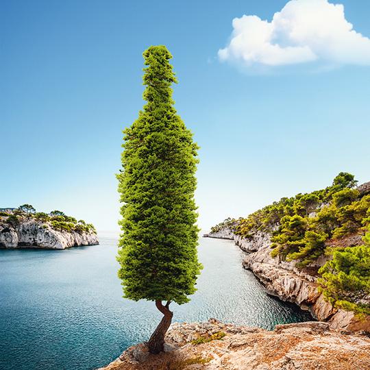 home_igp-mediterranee