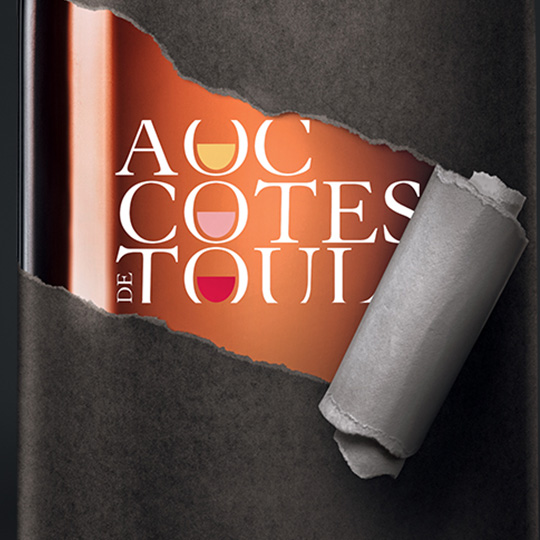 home_aoc-cotes-de-toul